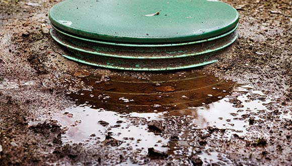 Septic load and dye testing services from Williams Home Inspection